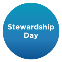 The Rise of Investor Stewardship: A Global Perspective
